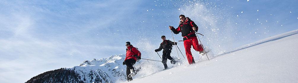 611 Alp Sura Trail