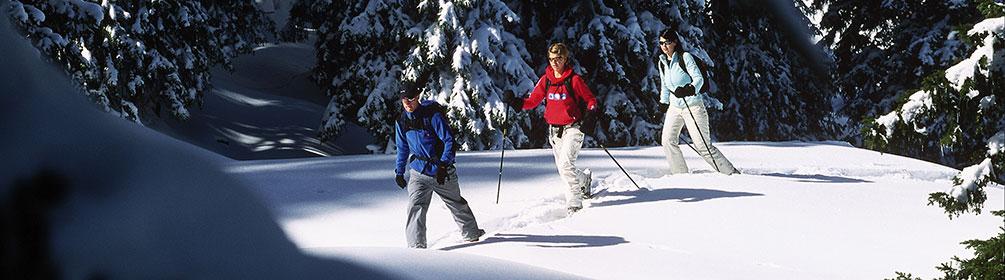 710 Pardiel–Laufböden Trail