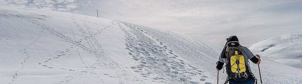 790 Erzegg Trail