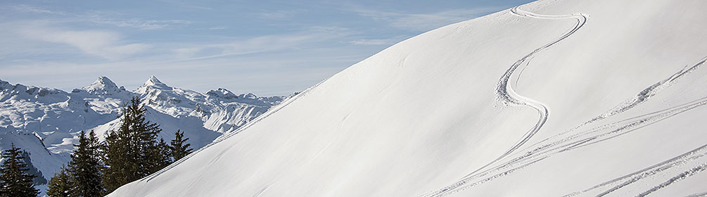 819 Ober-Altberg-Schneeschutrail