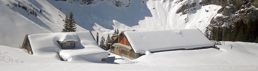 870 Schneeschuhtrail Bannalp