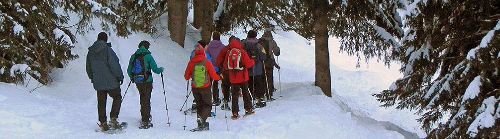 886 Brüsti Trail