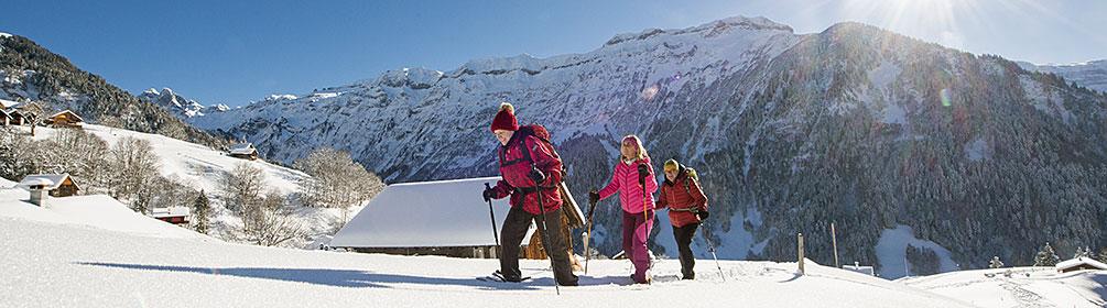 991 Stäfeli Trail