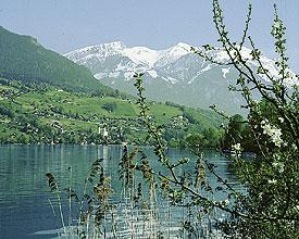 Kampf um das Alpenpanorama
