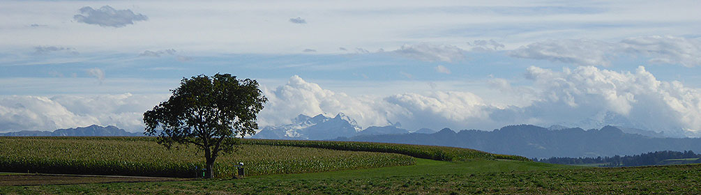 38 Luzerner Hinterland–Rigi