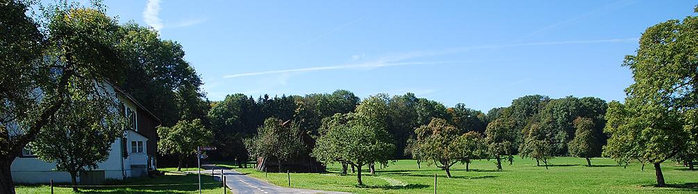 55 Konzil Radweg