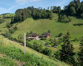 VL_099_05_039_nach_Obersaengeli_M.jpg