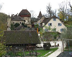 VL_111_112_Schloss_Wildenstein2