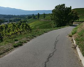 VL_172_Route_du_Vignoble_genevois_Ch_Corniche_Dardagny_12_M.jpg