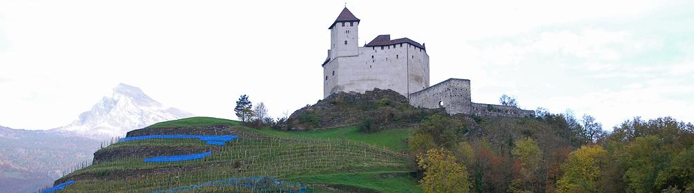 35 Liechtensteiner Rheintalroute