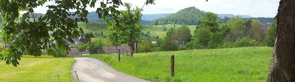 469 Wildenstein–Rifenstein Weg