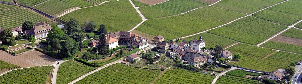 488 Route du vignoble de La Cote