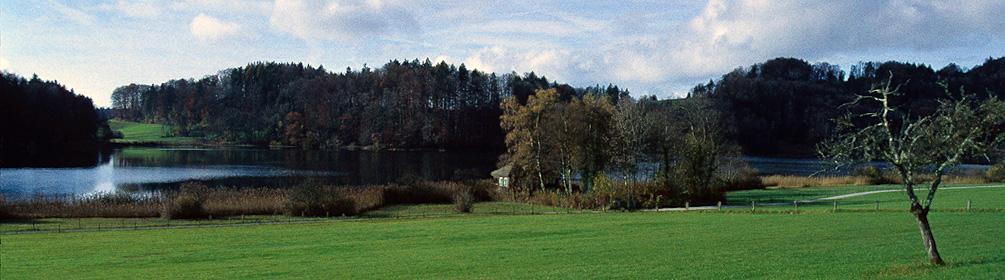 51 Säuliamt–Schwyz