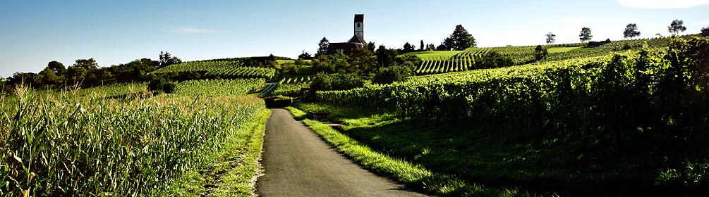 Klettgauer Wein-Route