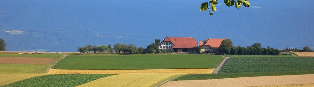 801 Bucheggberg-Route