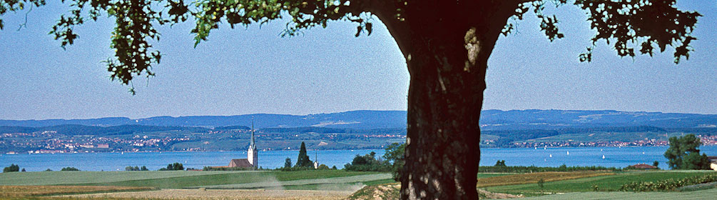 82 Seerücken-Route