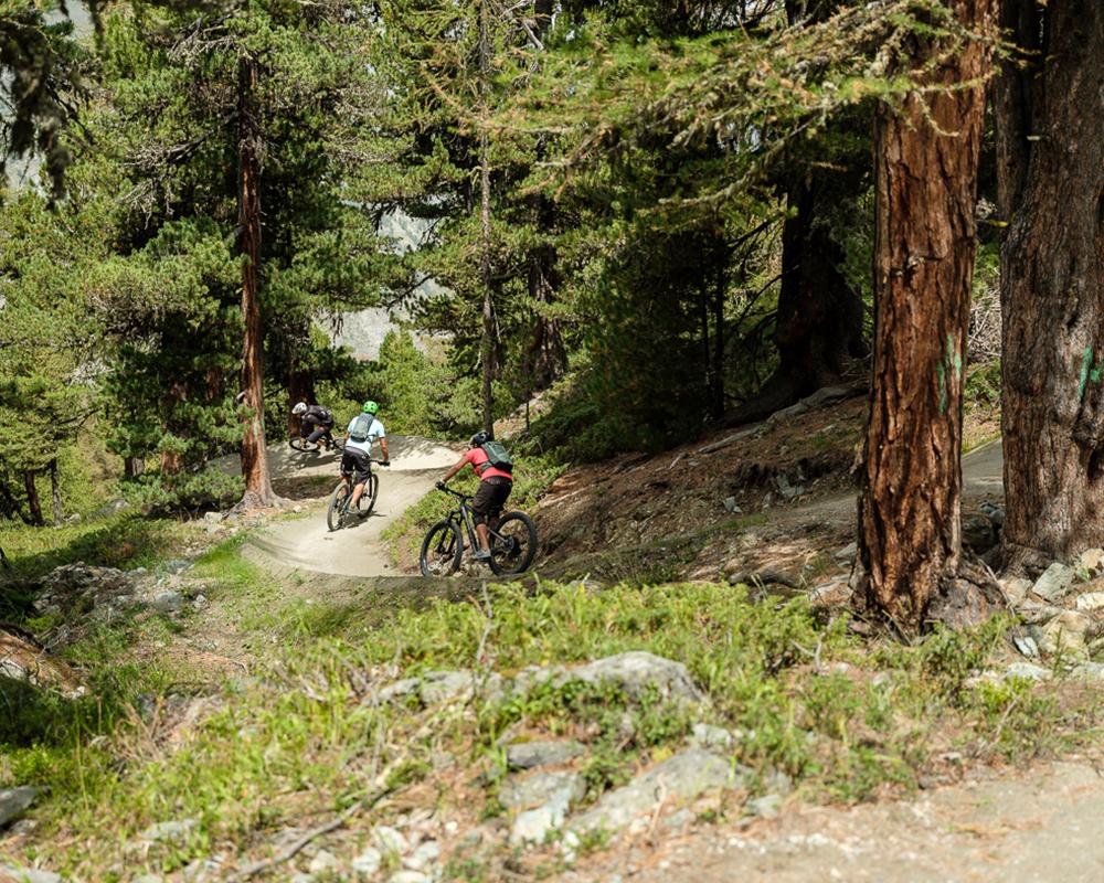 Sunnegga-Trail
