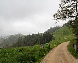 Alpenpanorama-Weg