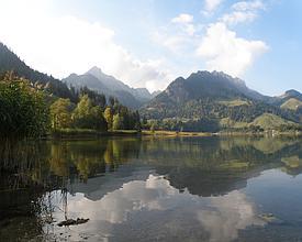 Chemin panorama alpin