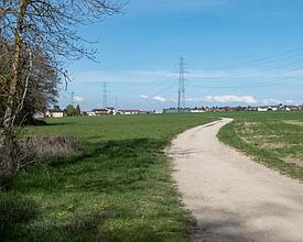 WL_003_29_004_Pont_Bene_M.jpg