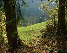 Toggenburger Höhenweg