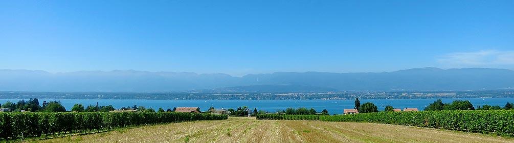 147 Promenade du coteau entre Arve et lac