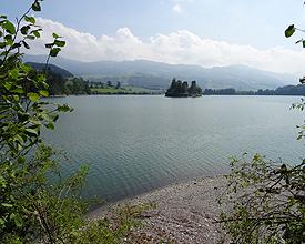 Sentier du Lac de la Gruyère