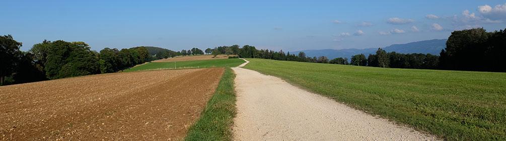 31 Chemin du Jura