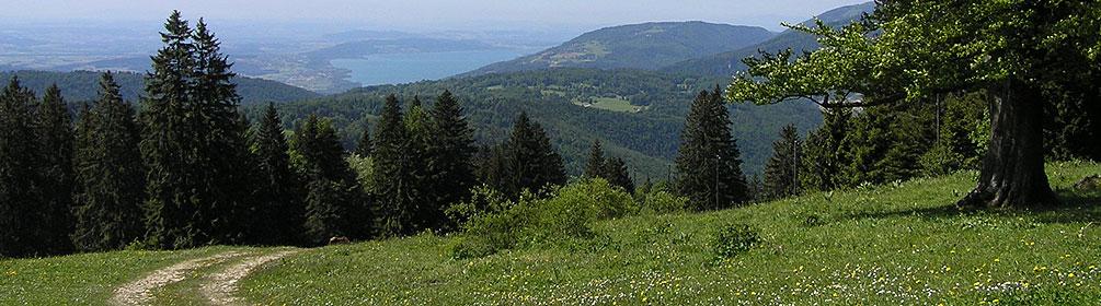 Chemin de Werdtberg et Montagne de Sorvilier