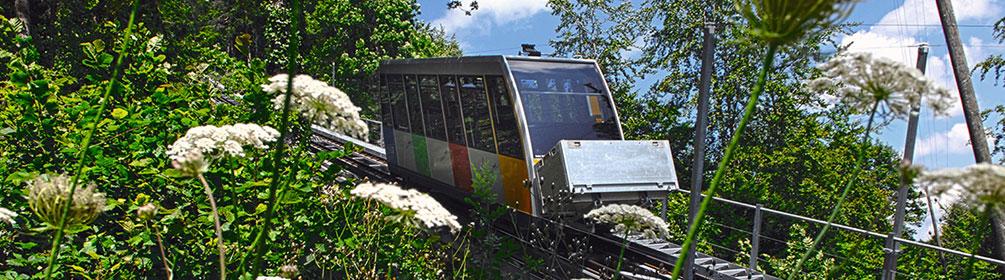 422 Chemin du Mont Soleil