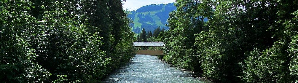 448 Saane-Uferweg