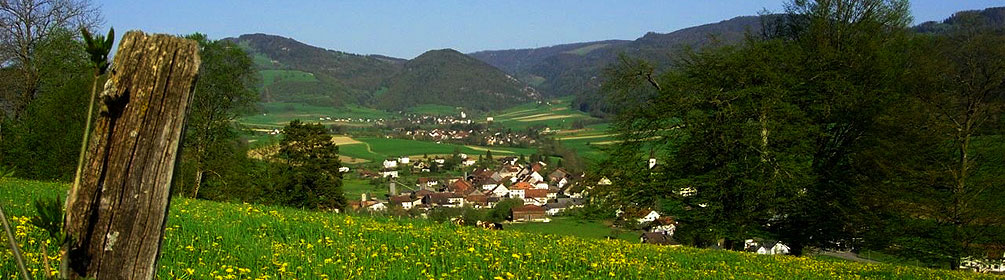 451 Chemin Tiergart-Plain Fayen