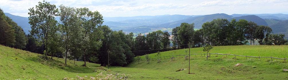 454 Chemin du Val Terbi