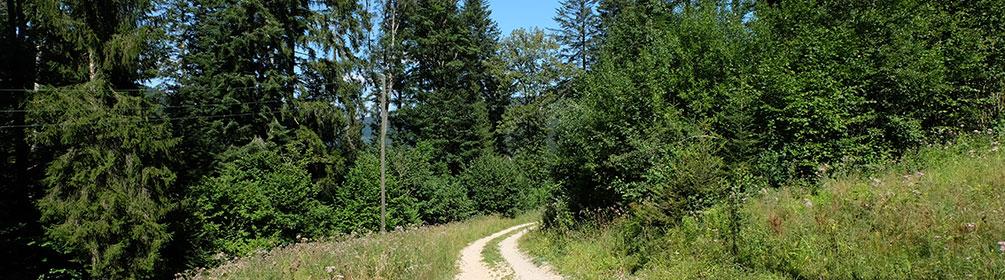 457 Des Franches-Montagnes au Doubs
