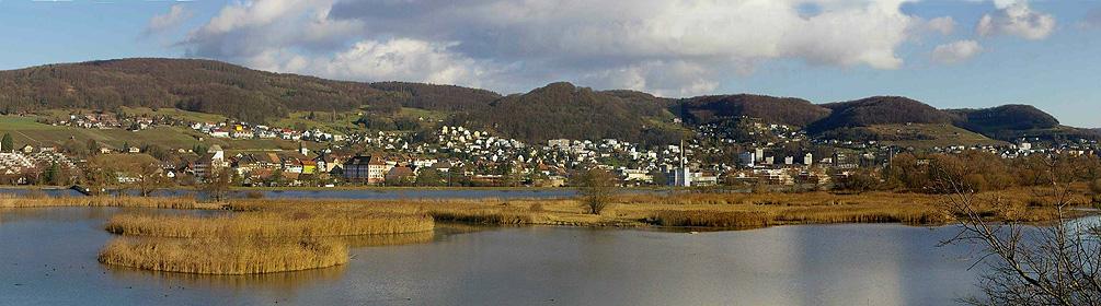 525 Klingnauer Uferweg