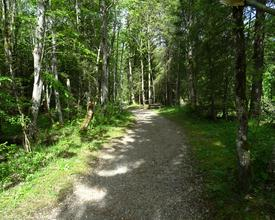 Emmenuferweg