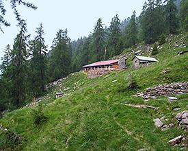 Sentiero Alpino Calanca