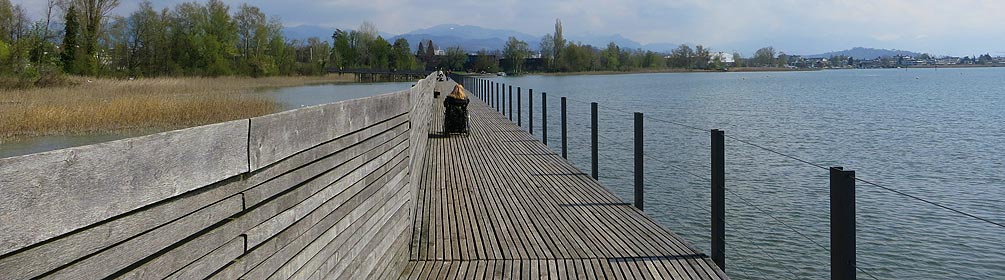 849 Holzbrücke Seedamm-Weg