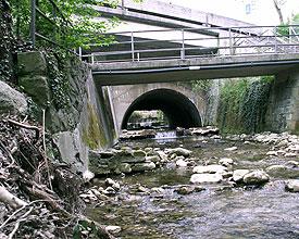 WL_868_Wehrenbach_bei_Burgwies_Ru2_copyright_Gruen_Stadt_Zuerich_Fachstelle_Naturschutz