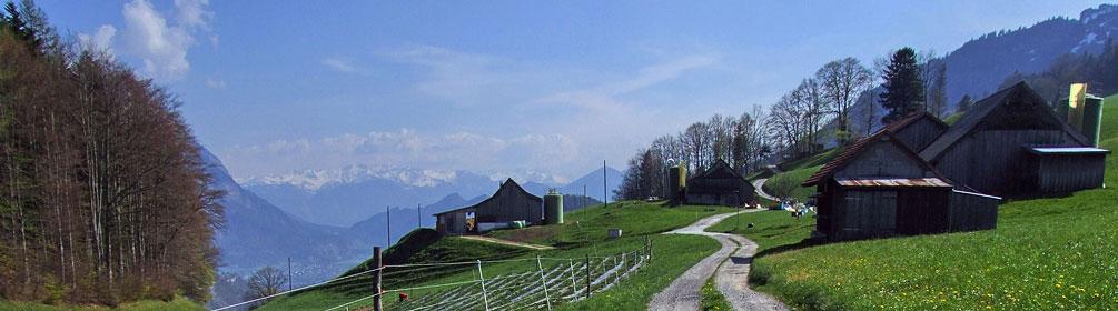 86 Rheintaler Höhenweg