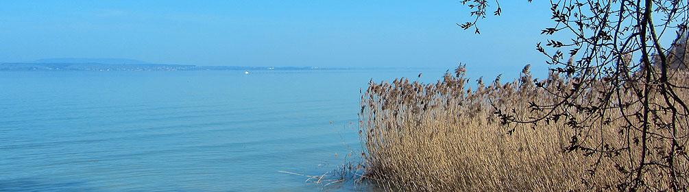 919 Bodensee-Uferweg