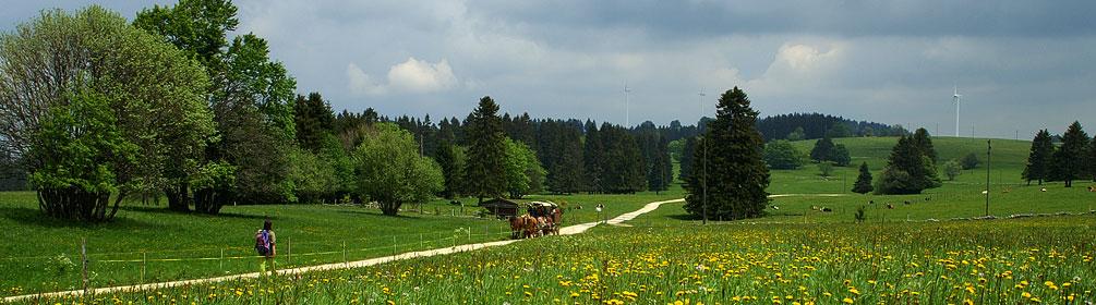 91 Chemin du Jura bernois