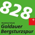 Goldauer Bergsturzspur