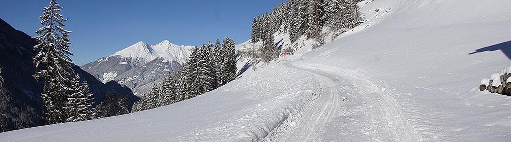 Bergün-Sonnenweg