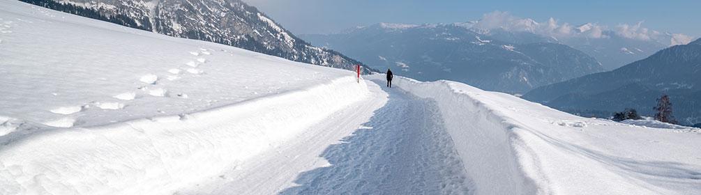 273 Höhenweg Foppa-Fidaz