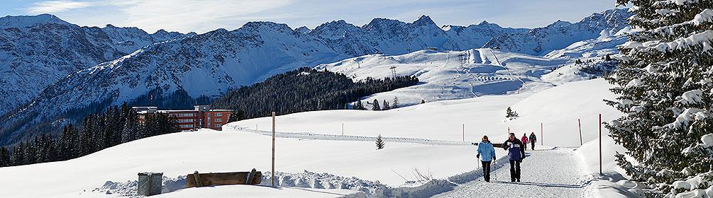 Arlenwald-Winterwanderweg