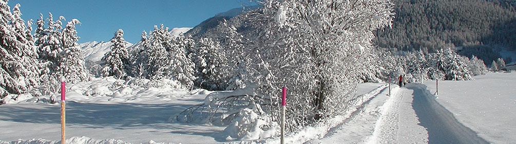 315 La Plaiv-Winterwanderweg