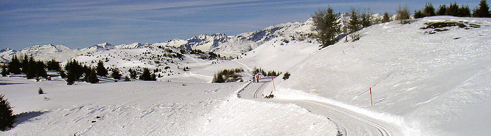 373 Panoramaweg Feldis