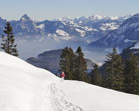 WW_502_Winterwandern_Klewenalp_Aengi_Stockhuette_Weg_0_M