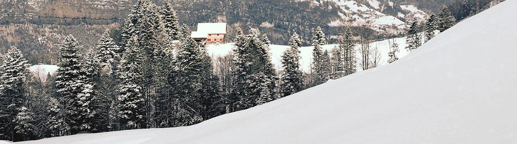 580 Nühusweidli-Winterwanderweg